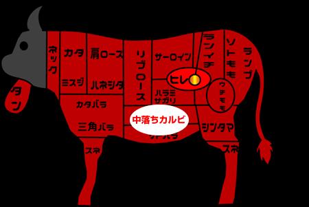 牛肉部位【中落ちカルビ】|別名「ゲタカルビ」あばら骨の間にあって脂たっぷり!