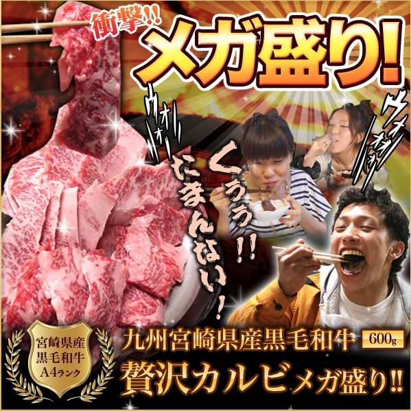 宮崎牛通販焼肉セット