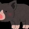 【2019】黒豚|通販・ギフト|しゃぶしゃぶ、とんかつ、ハンバーグなど価格比較